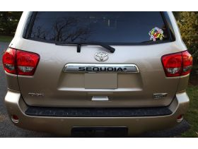 Rear Door Plastic Letters Inserts for 2008+ Toyota Sequoia Models