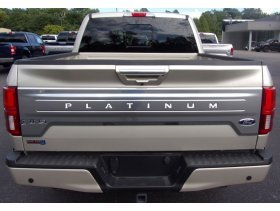 Tailgate Plastic Letters Inserts for 2018-2020 Ford PLATINUM F-150 Models